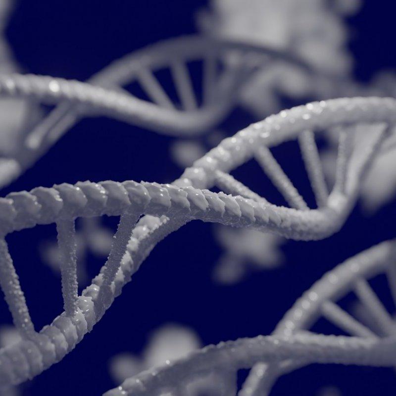 節儉基因難瘦是基因的錯?-封面圖